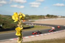 landscape, Van Amersfoort Racing