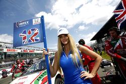 Grid girl de Rob Huff, Honda Racing Team JAS, Honda Civic WTCC