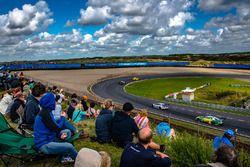 Timo Glock, BMW Team RMG, BMW M4 DTM, athmosphere
