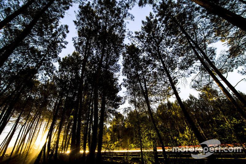 Gece ışıkları