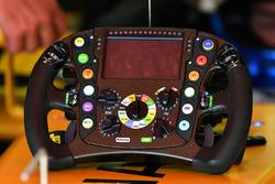 Renault Sport F1 Team RS17, volante