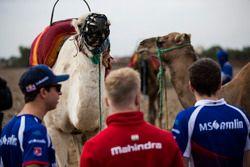 Antonio Felix da Costa, Amlin Andretti Formula E Team and Felix Rosenqvist, Mahindra Racin
