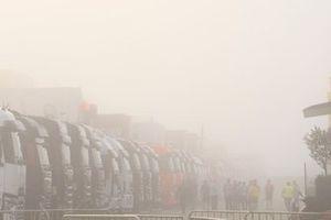 Fog in the paddock