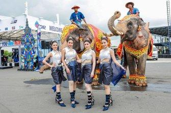 Girls with elephants