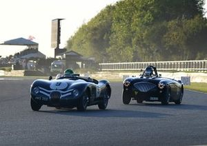 Freddie March Memorial Trophy Stefan Ziegler Jaguar C-Type