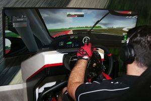 Un pilota della Carrera eSport Cup
