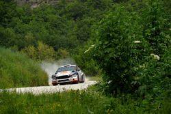Andrea Dalmazzini, Andrea Albertini, Ford Fiesta R5
