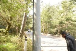 Il luogo dell'incidente di Mauro Amendolia e Gemma Amendolia: segni di impatto su un palo