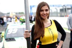 Chica de la parrilla para Mike Rockenfeller, Audi Sport Team Phoenix, Audi RS 5 DTM