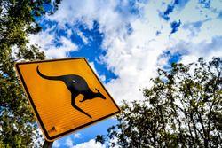 Kangaroo board