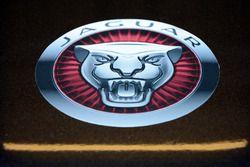 Jaguar Racing detail