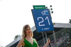 La grid girl di Pierre Gasly, PREMA Racing