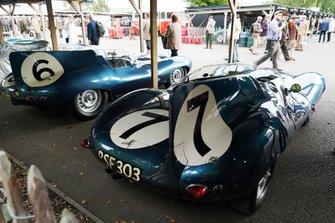Ecurie Ecosse Jaguar D-Types