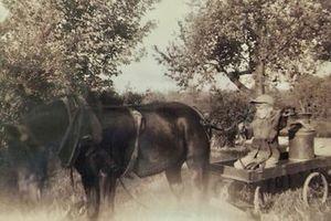 Gordon Johncock âgé de 4 avec un cheval