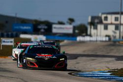#86 Michael Shank Racing Acura NSX: Oswaldo Negri Jr., Jeff Segal, Tom Dyer