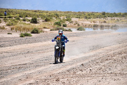 Yamaha #4, Adrien van Beveren