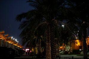 Il Paddock in Bahrain