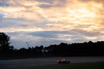 #85 Keating Motorsport, Ford GT: Ben Keating, Jeroen Bleekemolen, Felipe Fraga