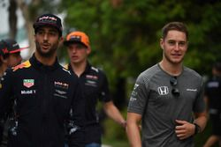 Daniel Ricciardo, Red Bull Racing en Stoffel Vandoorne, McLaren