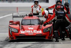 #31 Action Express Racing Cadillac DPi, P: Eric Curran, Mike Conway, Stuart Middleton, Felipe Nasr,