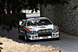 Lancia 037 Marcus Willis