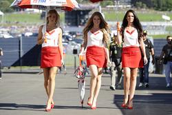 Грид-герлз команды Ducati