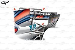 Double T-wing de la Williams FW40