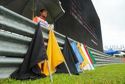 Oficiales y banderas