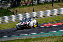 #99 ROWE Racing BMW M6 GT3: John Edwards, Connor de Phillippi, Nick Yelloly