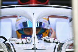 Marcus Ericsson, Sauber C37 gloves
