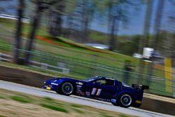 #11 TA3 Chevrolet Corvette: Randy Kinsland