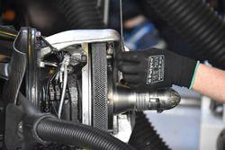 Williams FW40, dettaglio del disco del freno