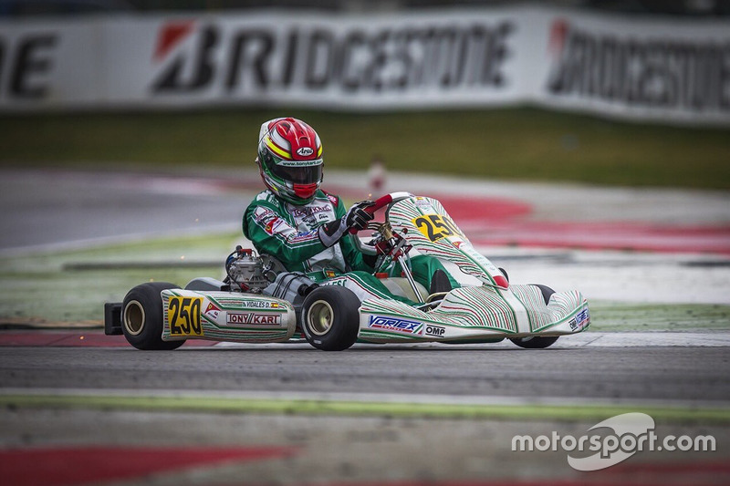 David Vidales, Tony Kart