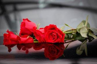 Toyota Supra con rosas
