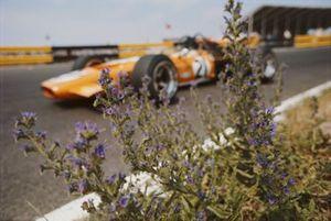 Andrea de Adamich, McLaren M14D Alfa Romeo, viewed through flowers
