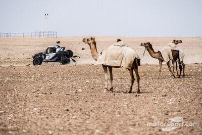 رالي قطر كروس كانتري