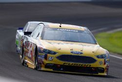 Patrick Carpentier, Go Green Racing, Ford