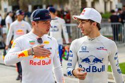 Max Verstappen, Red Bull Racing y Pierre Gasly, Scuderia Toro Rosso
