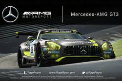 RaceRoom, Mercedes AMG GT3