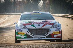Auto van Paolo Andreucci, Anna Andreussi, Peugeot 208 T16