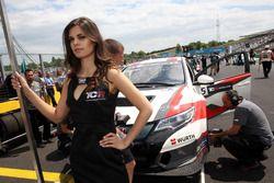 Chica de la parrilla para Roberto Colciago, M1RA, Honda Civic TCR