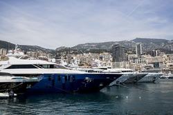 Yachts in Port Hercules