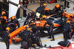 Stoffel Vandoorne, McLaren MCL32, dans les stands