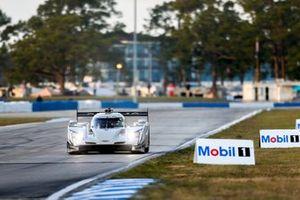 #01 Chip Ganassi Racing Cadillac DPi, DPi: Scott Dixon, Renger van der Zande, Kevin Magnussen