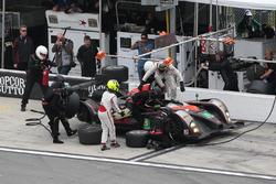 #8 Starworks Motorsports ORECA FLM09 : Jack Hawskworth, Chris Cumming, Renger van der Zande, Alex Popow