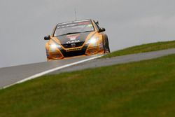 #25 Matt Neal, Halfords Yuasa Racing, Honda Civic Type R