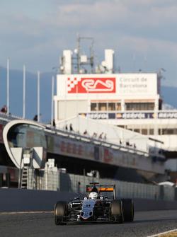 Alfonso Celis Jr., Sahara Force India F1 VJM09 ontwikkelingsrijder