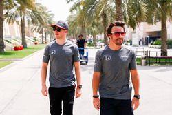 Stoffel Vandoorne, McLaren con Fernando Alonso, McLaren