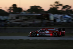 #31 Action Express Racing Cadillac DPi: Eric Curran, Dane Cameron, Mike Conway