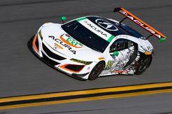 #93 Michael Shank Racing, Acura NSX, Andy Lally, Katherine Legge, Mark Wilkins, Graham Rahal